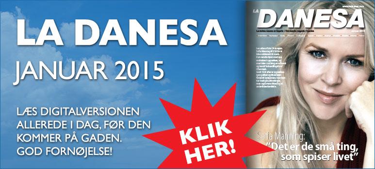 01 2015 LD Digital-version Januar-2015 Banner-773x350