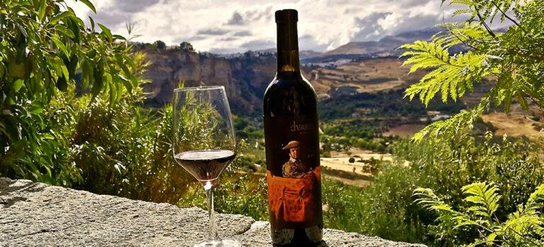 Natlig druehøst på Descalzos Viejos – muligvis Spaniens mest ejendommelige vingård