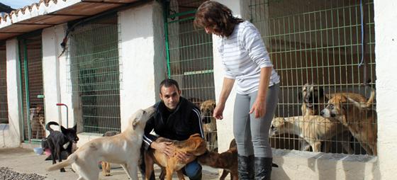 Kim Halliwell redder hunde i Spanien
