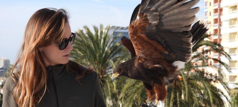 Et liv dedikeret til rovfugle:La Danesa møder Beatriz E. Artero