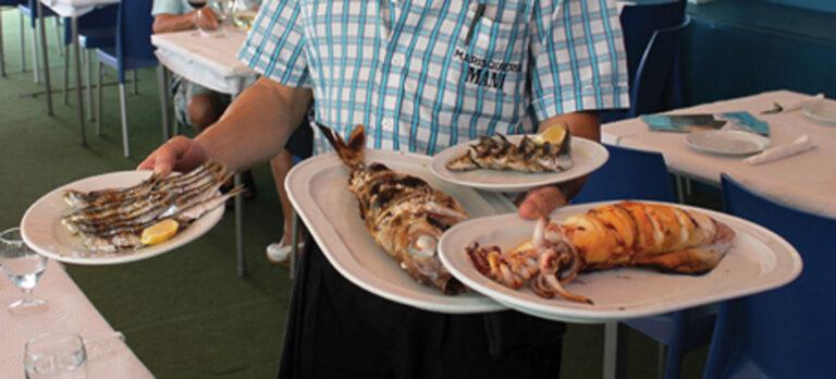 Månedens anbefaling: Friskfangede fisk på havnen i Caleta de Vélez