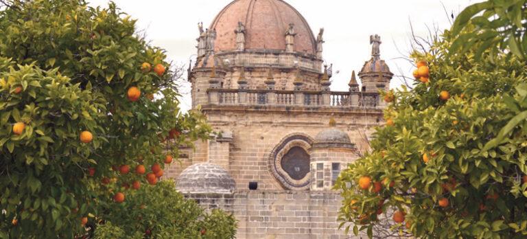 Den andalusiske appelsin