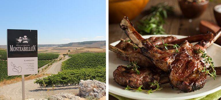 Ribera del Duero Specialiteter: Babylam & Vin