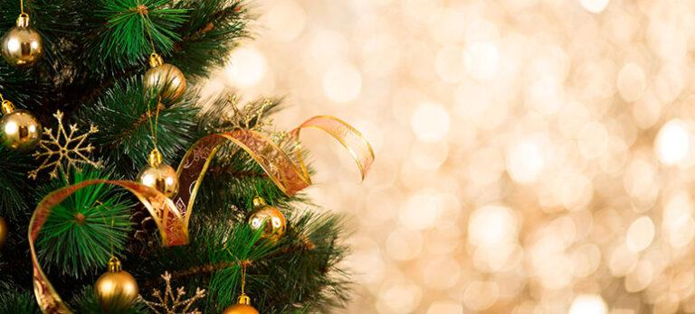 Kære Læser: Jul – som vi plejer!