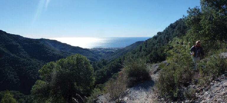 Gran Senda de Málaga