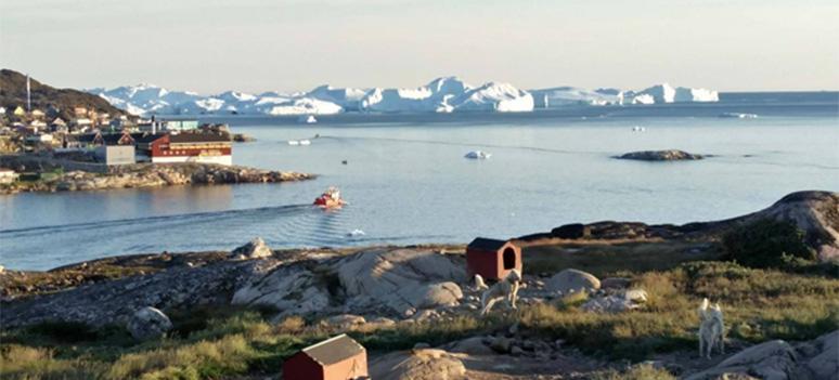 Slædehunde star bundet udenfor deres røde hundehuse i udkanten af alle byer pa Grønland