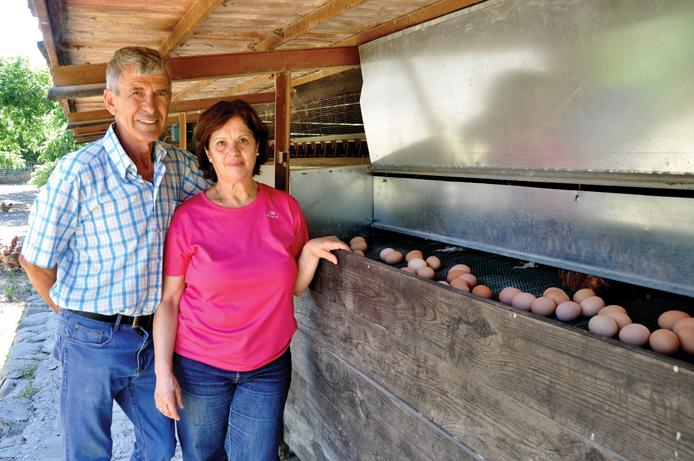 Sabor a Málaga: Æg og pekannødder