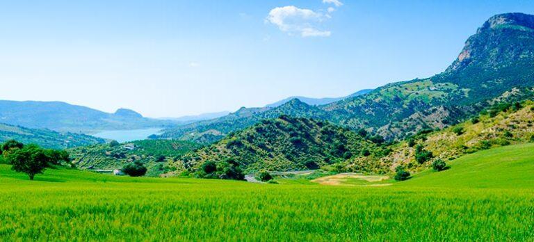 Romernes plejehjem, Montecorto og Setenil de las Bodegas