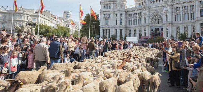 Når får indtager Madrids gader