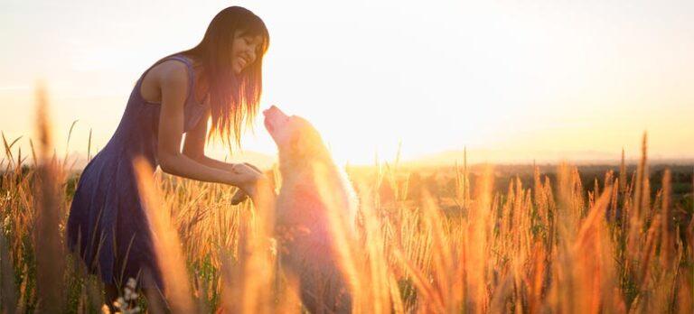 Evig kærlighed garanteres – lidt om hunde og mennesker på Paseo Maritimo