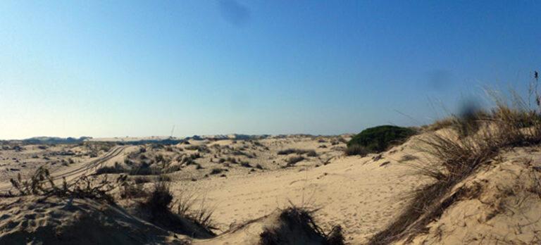Doñana fra Sanlúcar de Barrameda