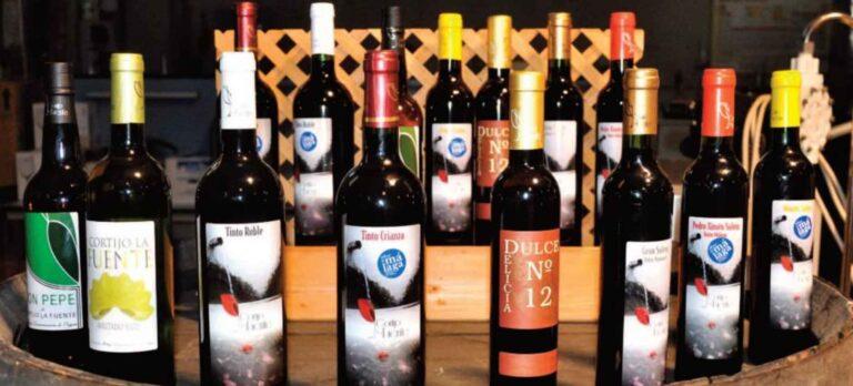 Prisvindende vine fra lille bodega i Mollina Bodega Cortijo la Fuente