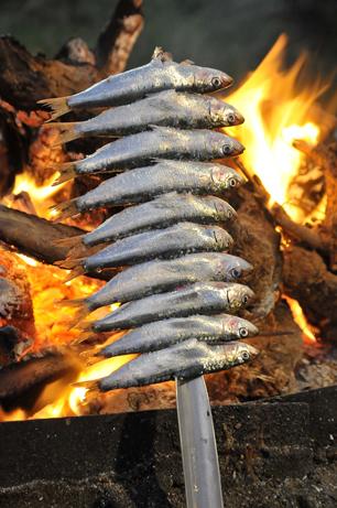 Sardiner, sardiner, sardiner – Málagas varemærke serveres på spyd, se hvordan hos Chiringuito Los Moreno!