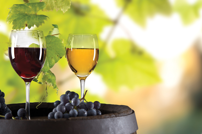Vinos & Gourmet juni 2016
