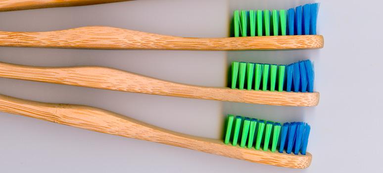toothbrushwood