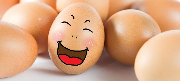 Hvorfor står æggene ikke på køl i de spanske butikker og supermarkeder?