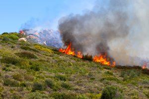 Flere skovbrande i Andalusien