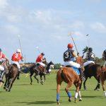 Sotograndes 50. internationale polomesterskab i gang
