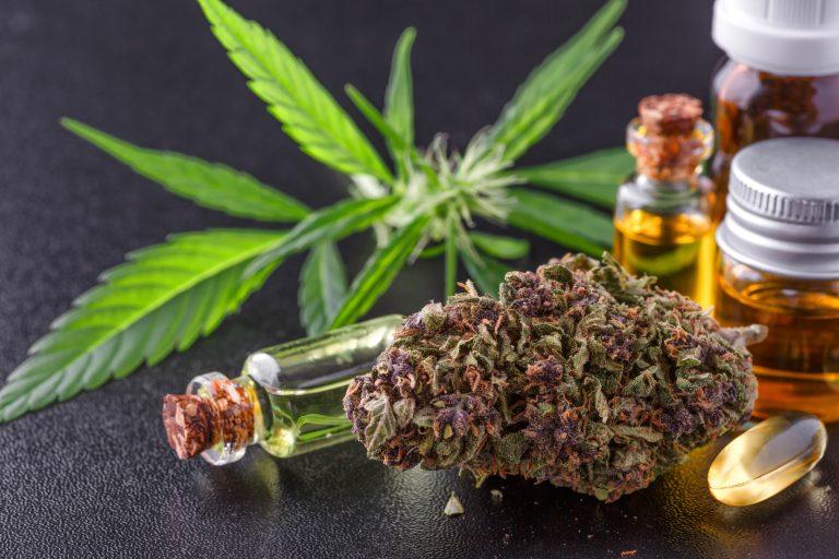 Spansk nej til cannabis