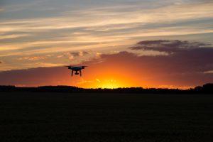 Drone leverer mad til kæledyr, der er strandet på en ø i lavaen